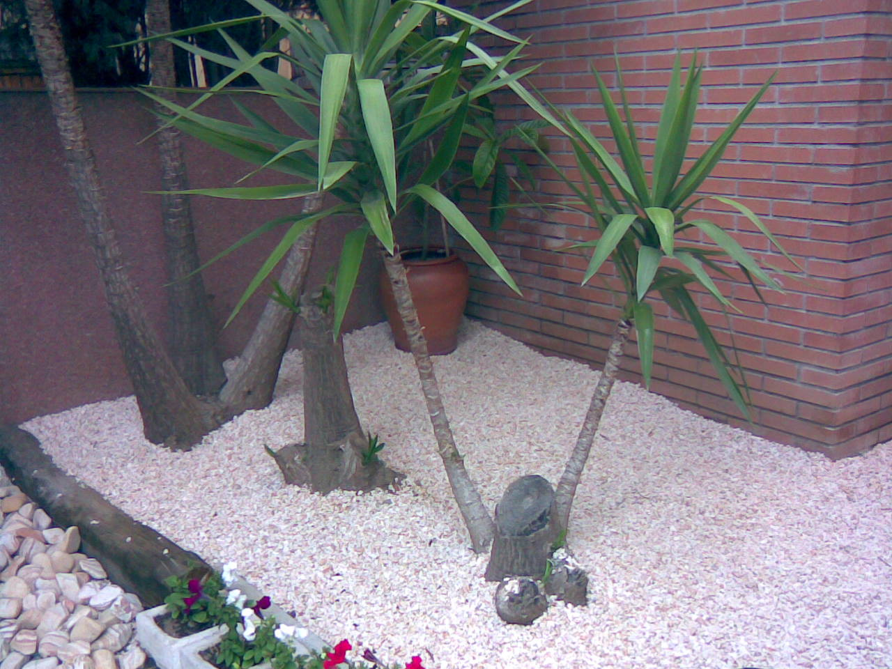 Diseño de jardín en Castelldefels 4