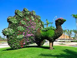 Jardines de mexico topiario de animales