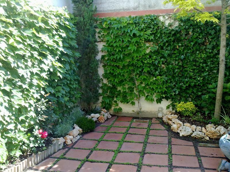 Alp jardineria servicios de jardineria barcelona for Jardineria barcelona