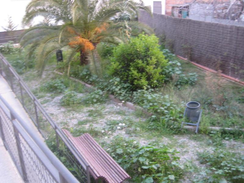 alp jardineria servicios de jardineria barcelona